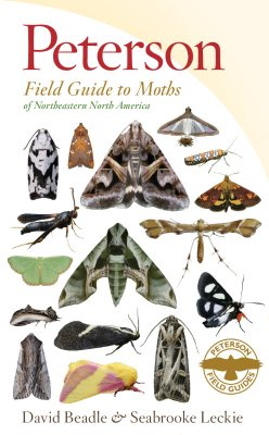 Peterson Field Guide to Moths of Northeastern North America - simulated cover